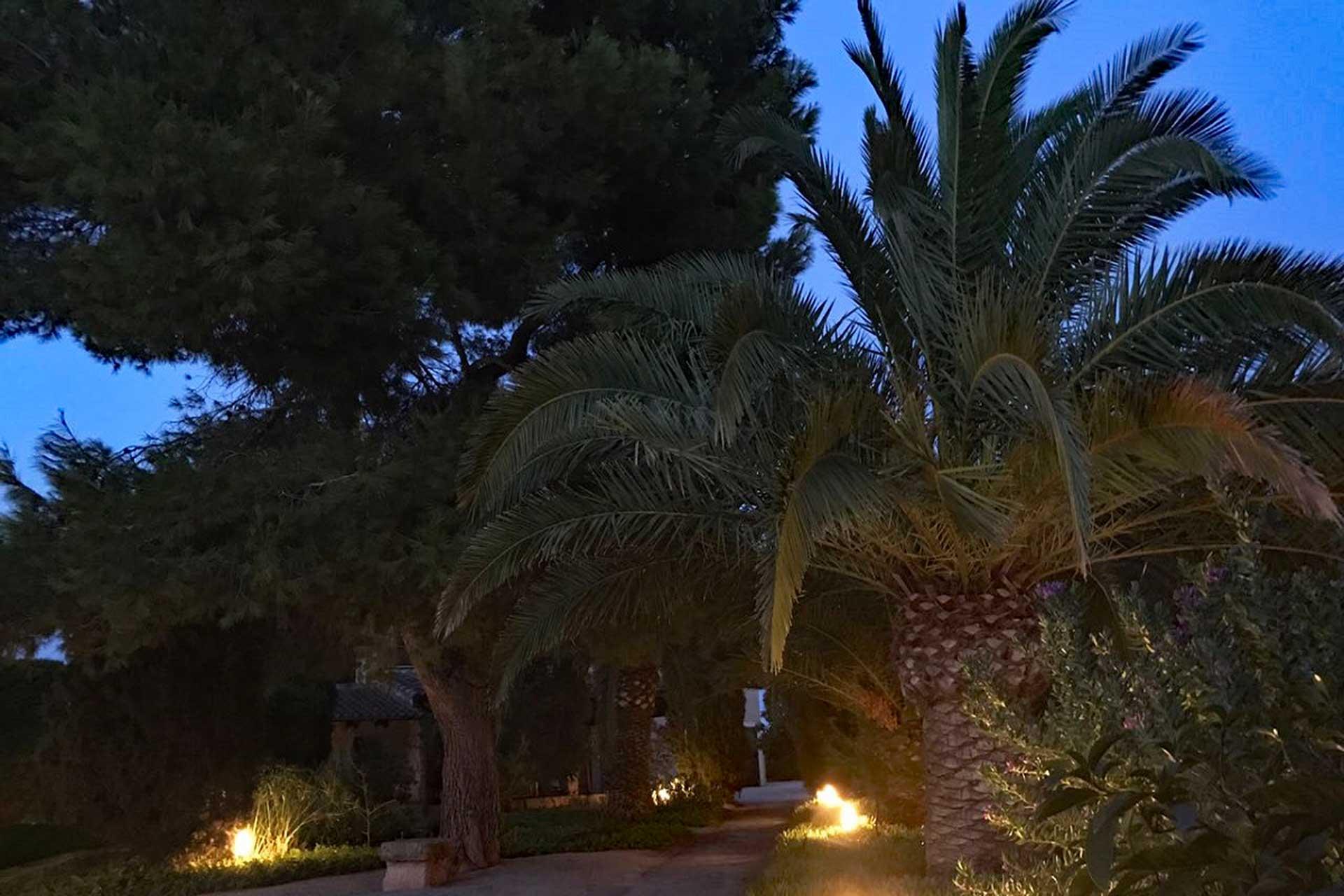 Finca C'an Murtera - Garden by night