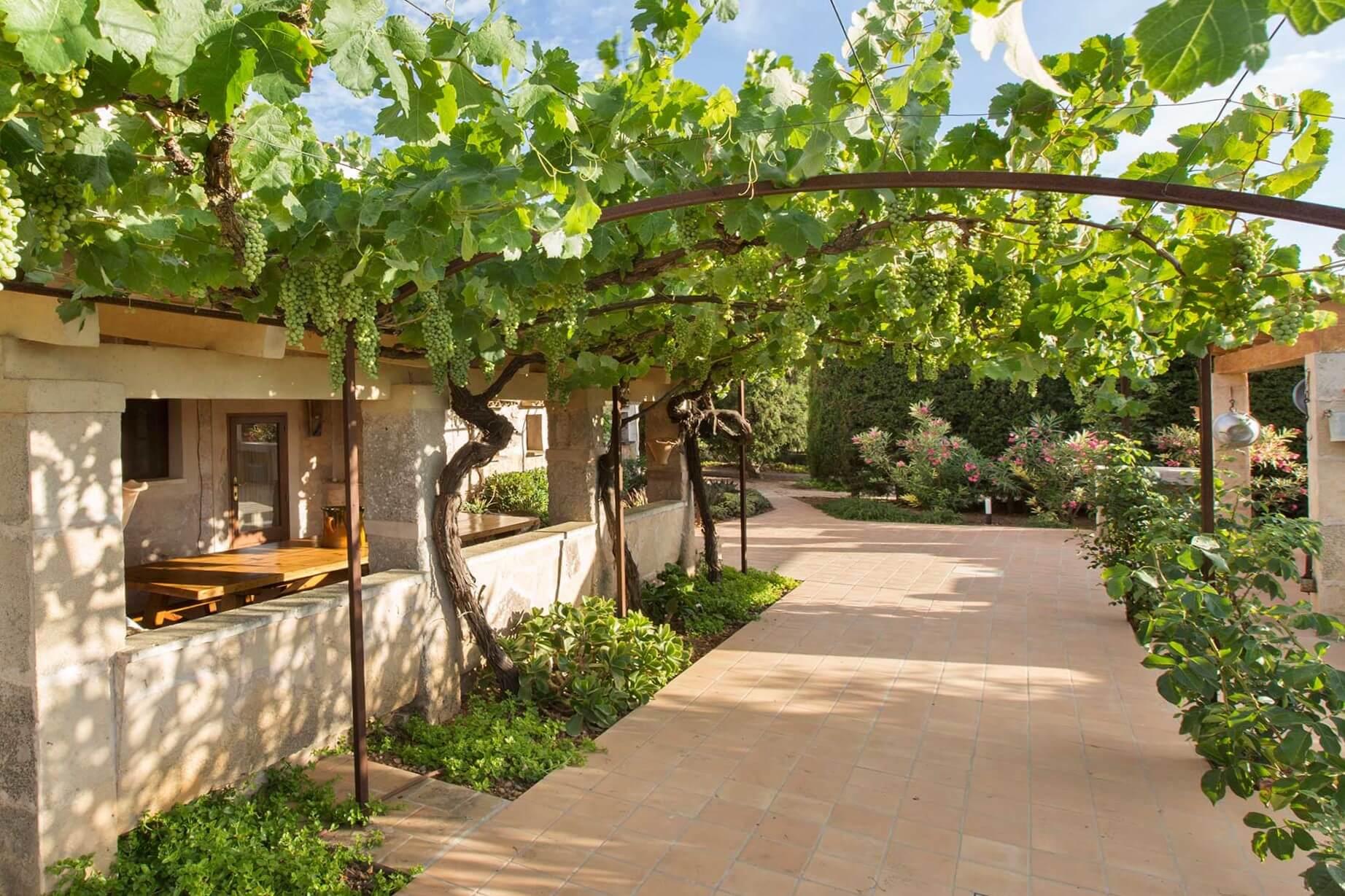 Finca C'an Murtera - Terrace with garden