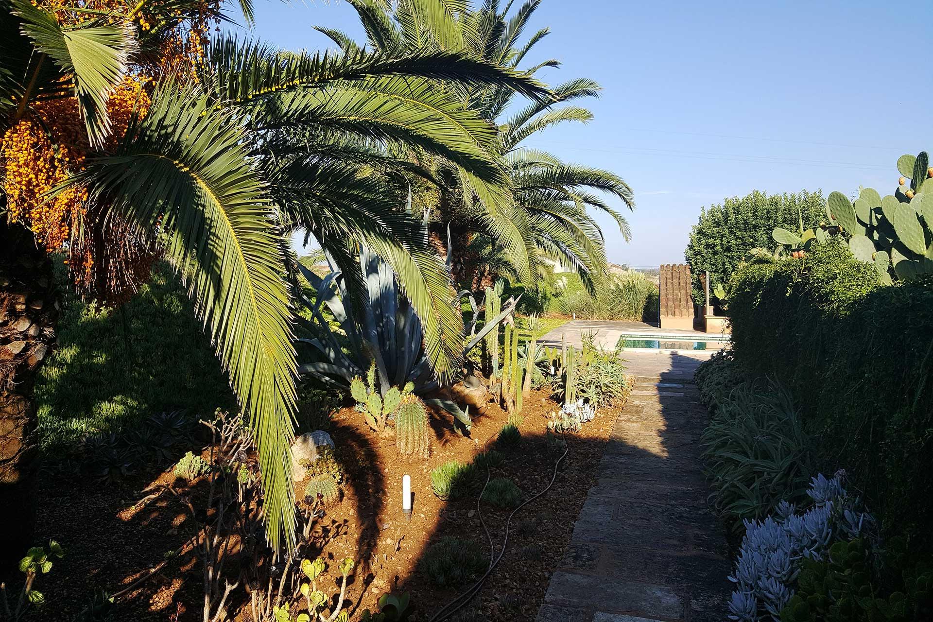 Finca C'an Murtera - Garden way to the swimming pool