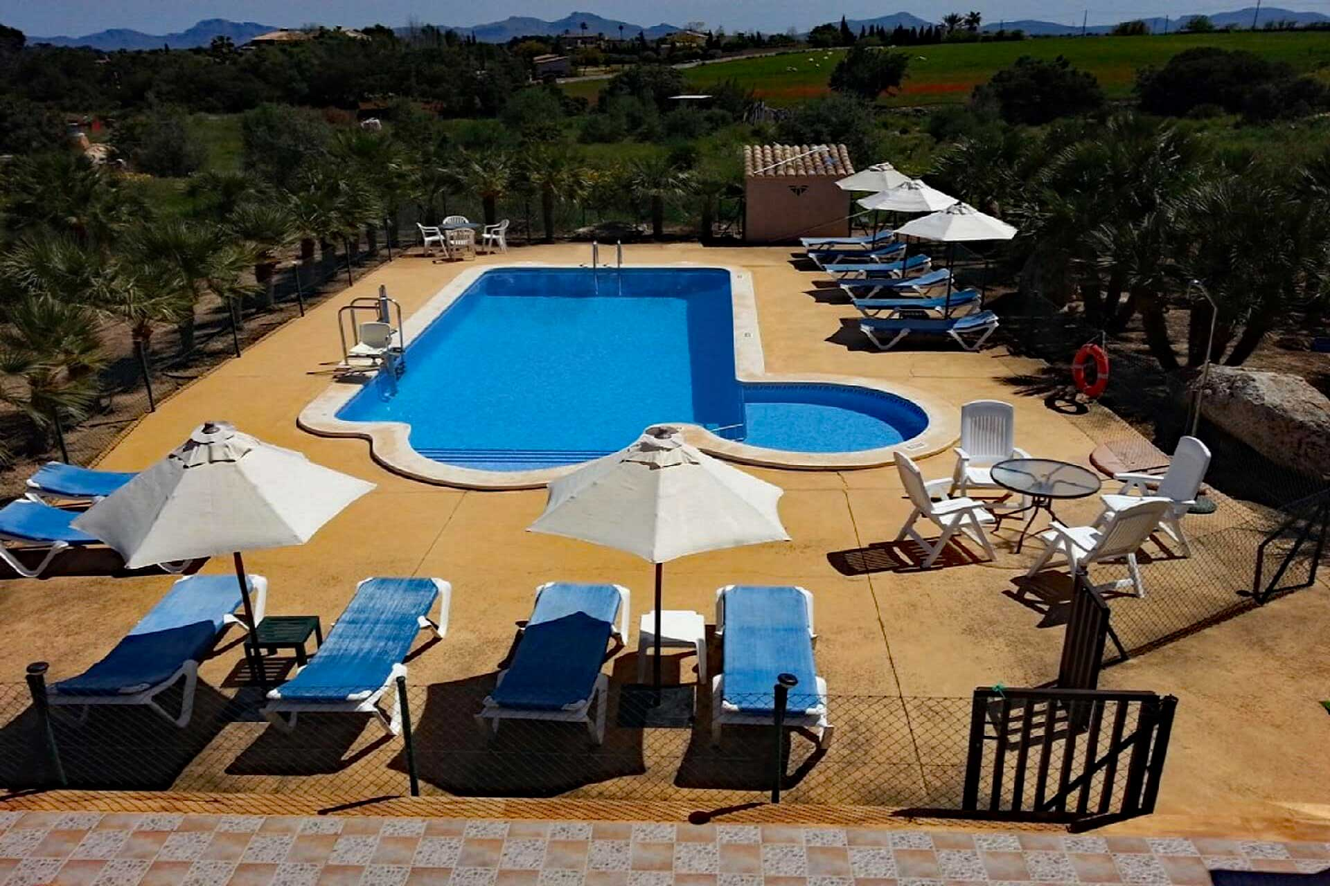 Finca Palmitos I - Swimming pool area