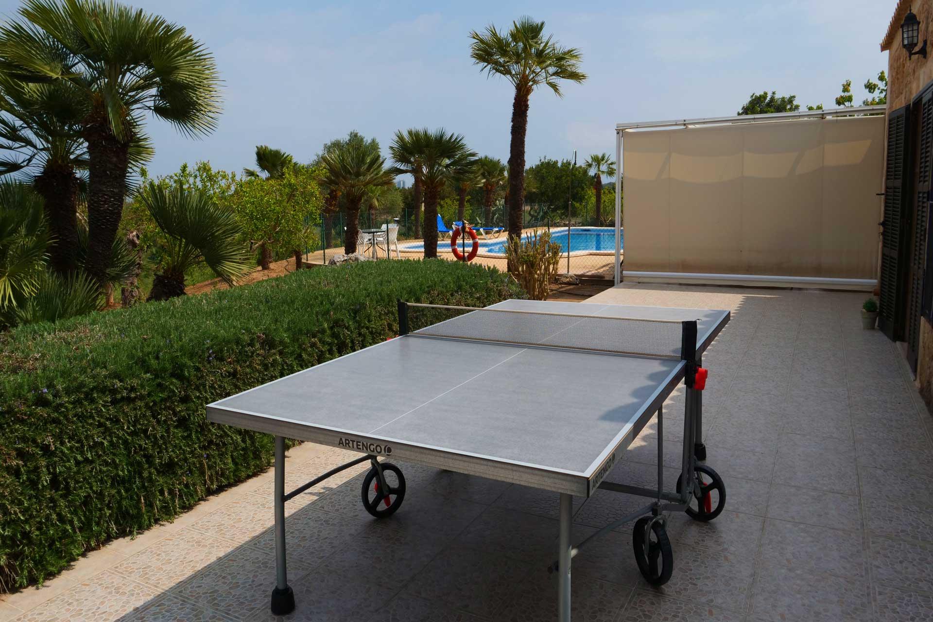Finca Palmitos II - Ping pong