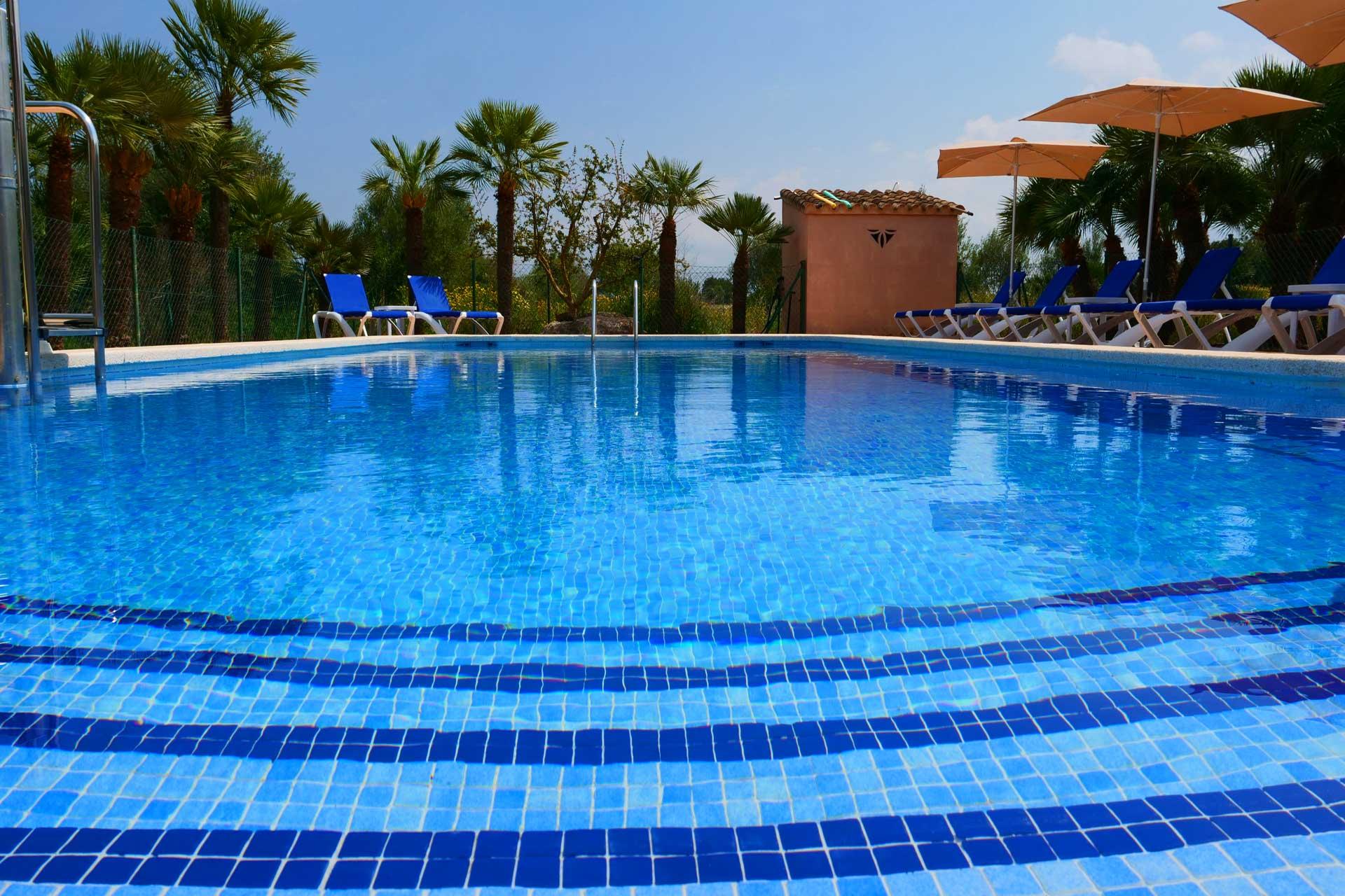 Finca Palmitos I - Swimming pool area