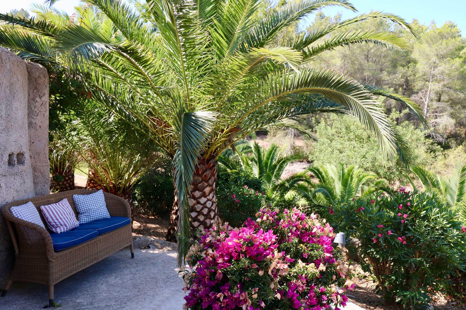 Villa Can Gecko AV Ibiza - Garten
