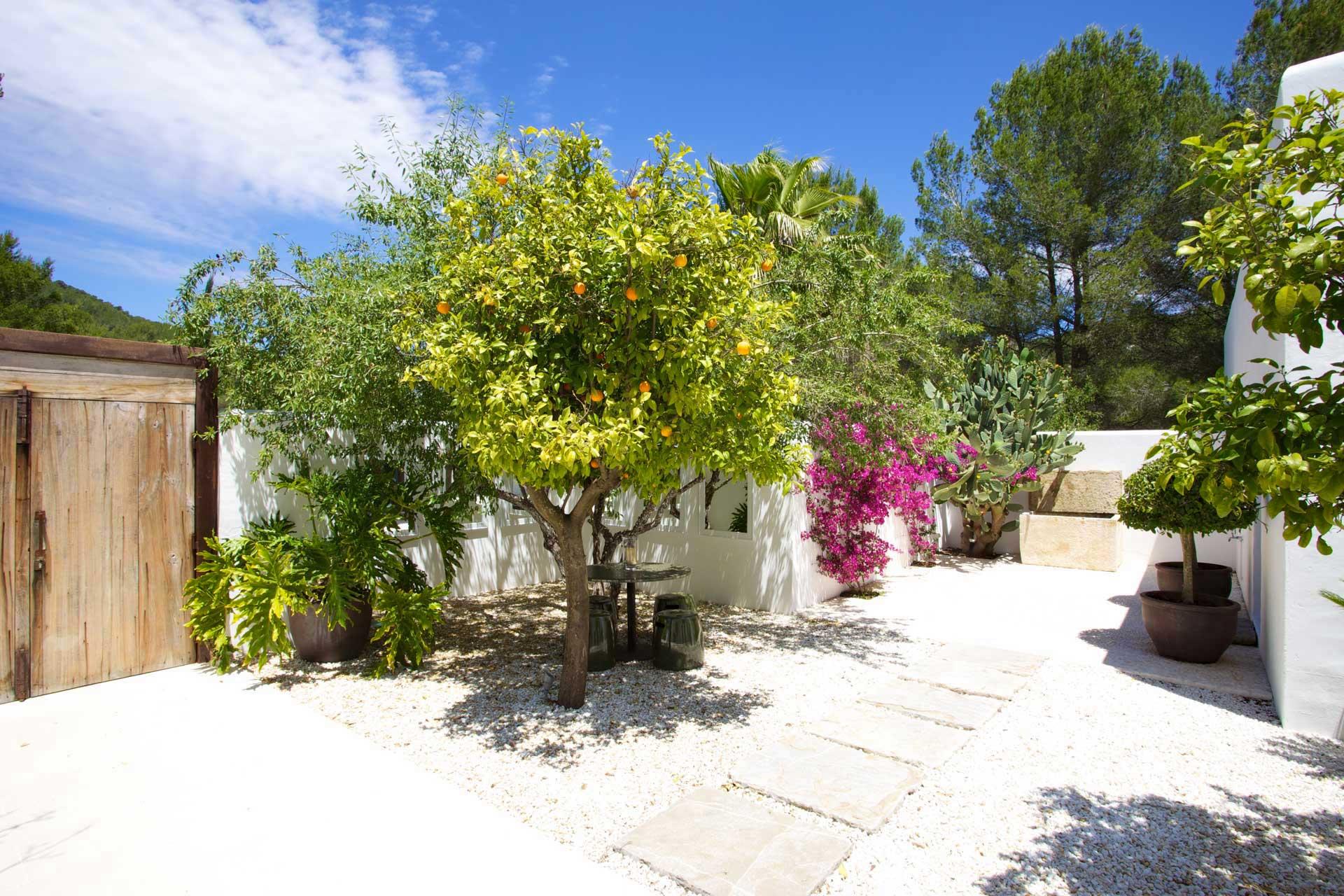 Villa Can Buu Ibiza - Courtyard